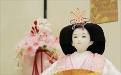 左京 京十一番親王 -色々鳳凰-